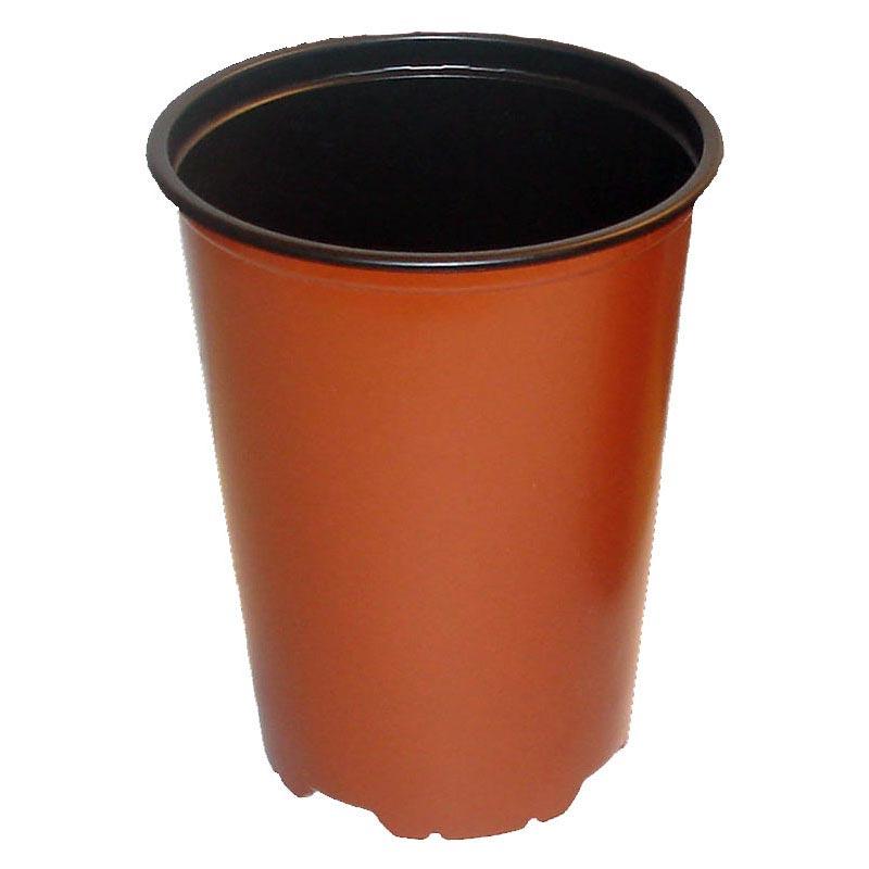 Terracotta Tall Bonsai Training Pot 6